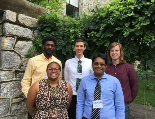 Successful Summer:  CEMB Summer Undergraduate Research Program at Washington University in St. Louis