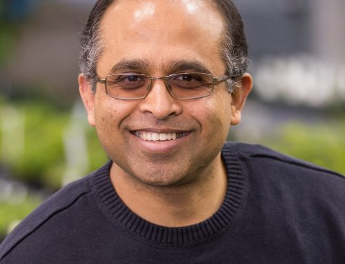 Ram Dixit awarded $2M NIH grant to study dynamics of intracellular scaffolds