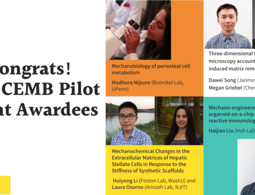 Center for Engineering MechanoBiology awards four trainee pilot grants