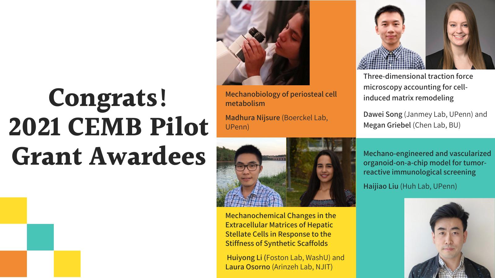 Center for Engineering Mechanobiology 2021 Pilot Awards